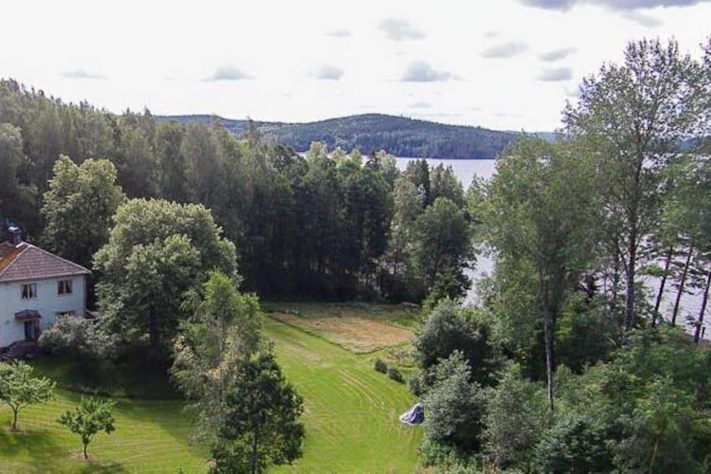 Timmerviken from above
