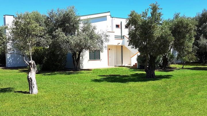 Affittimoderni S. Andrea apartments - SA762