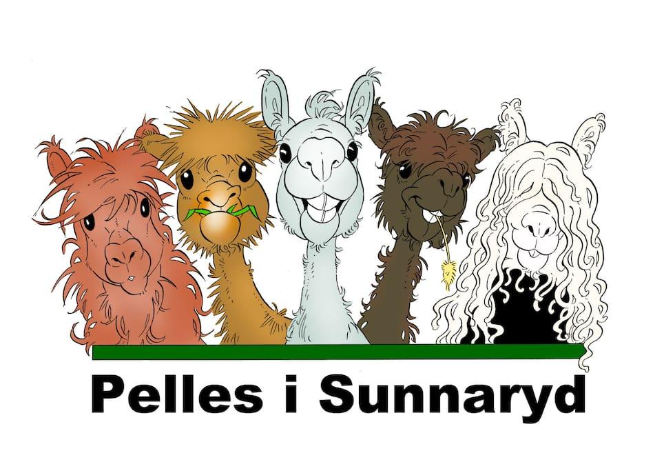 www.pellesisunnaryd.se