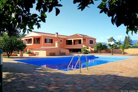 Fly Fish Algarve Holidays - Portimão - Bed & Breakfast