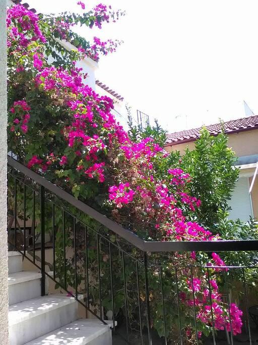 Το μπαλκόνι μας..