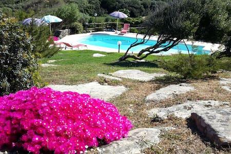 La Chintana, villa con piscina - Sassari