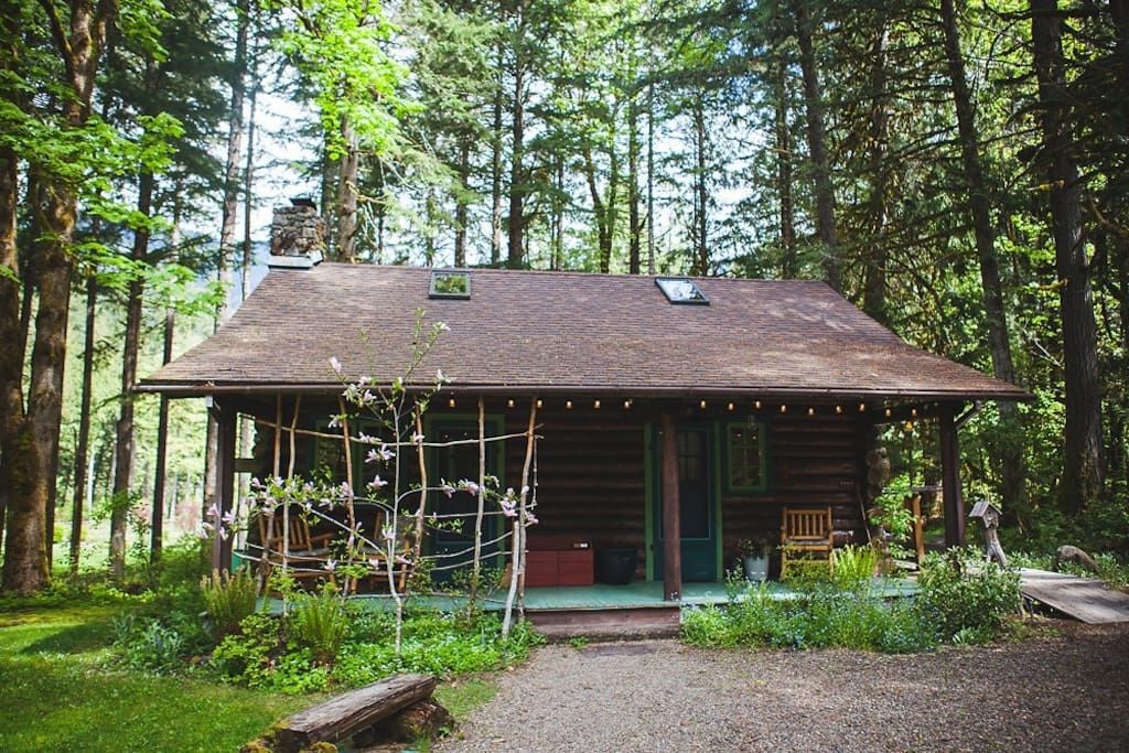Loloma lodge family cabin in the woods cabins for rent for Cabin in the woods oregon