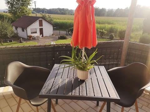 2 Zi-Whg. 28 km Bodensee mit Arbeitsplatz + Balkon