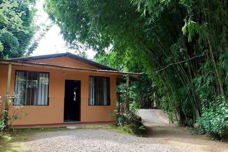 Paradise Casita - San Isidro de El General - Casa