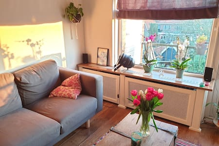 Room in cozy green apartment
