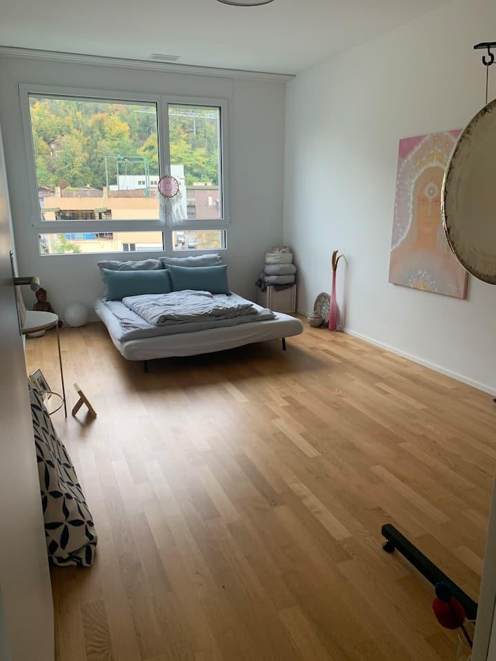 Cozy Room in Liestal