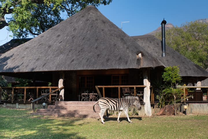 Blyde River Canyon Lodge - Luxury Family Cottage