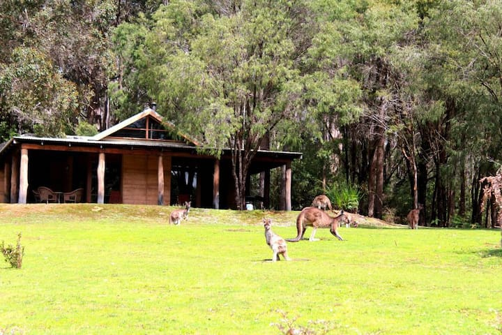 Watch kangaroos graze from your secluded spa chalet