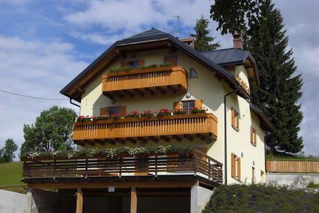 Relax vicino alla foresta - Tarvisio - Apartmen