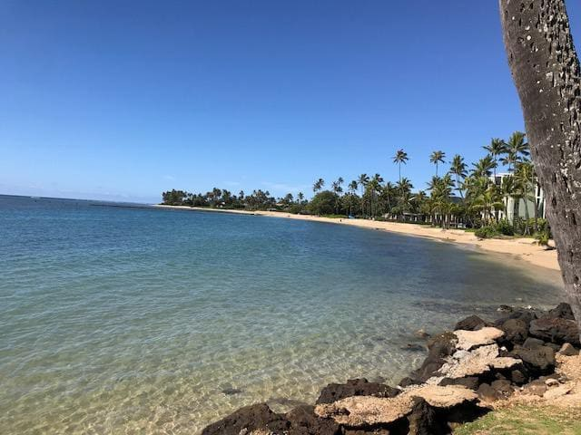 Kahala Beach-Privacy and Luxury!