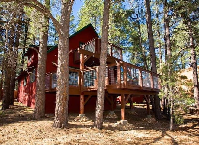 New Double Decker Deck! Literally built into the forest and between the trees.