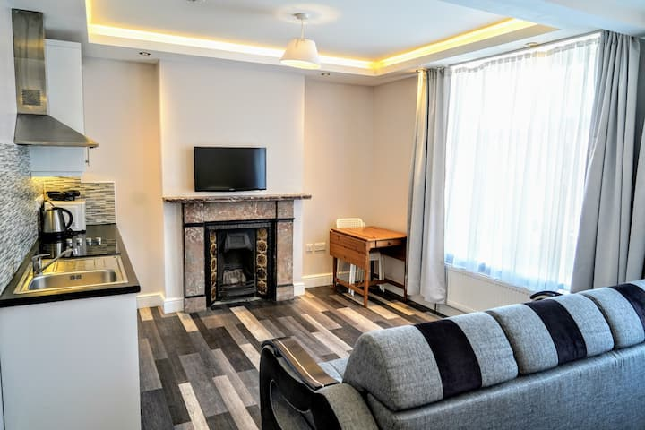 Comfortable Large Size Studio Flat in Zone1