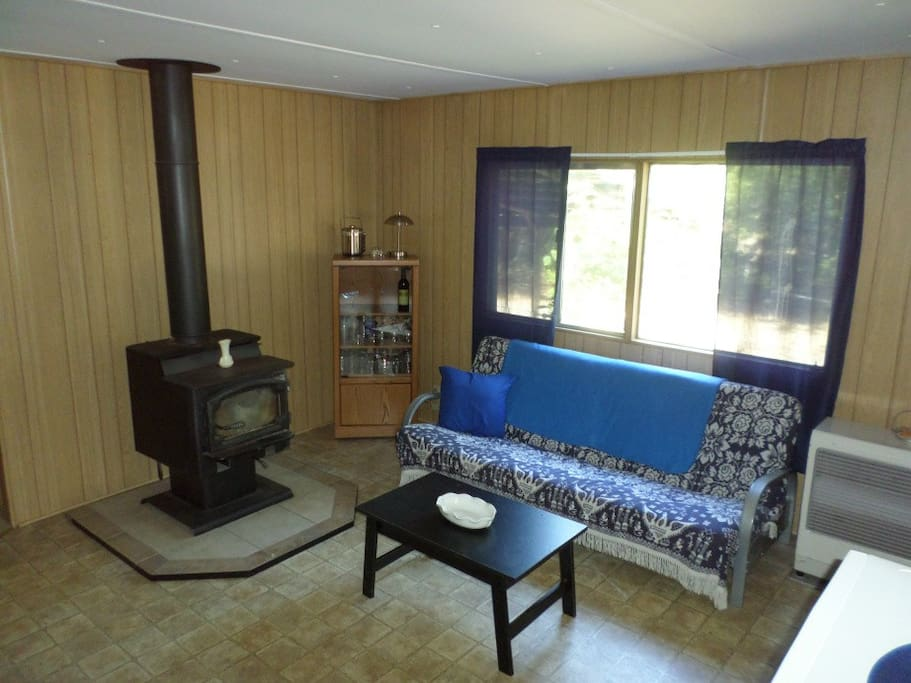 Electric heat and wood stove