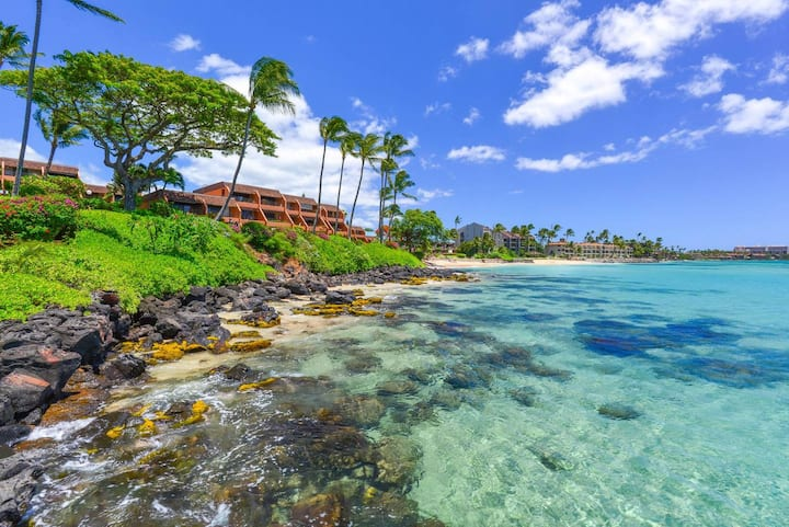 1BR Condo at the Oceanfront Kuleana Club
