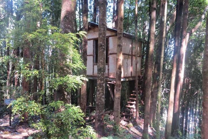 Refugio del Árbol Aonikenk Karho, Parque Queulat