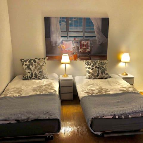 2 Einzelbetten 200x100cm die auch zu einem Doppelbett zusammengestellt werden können