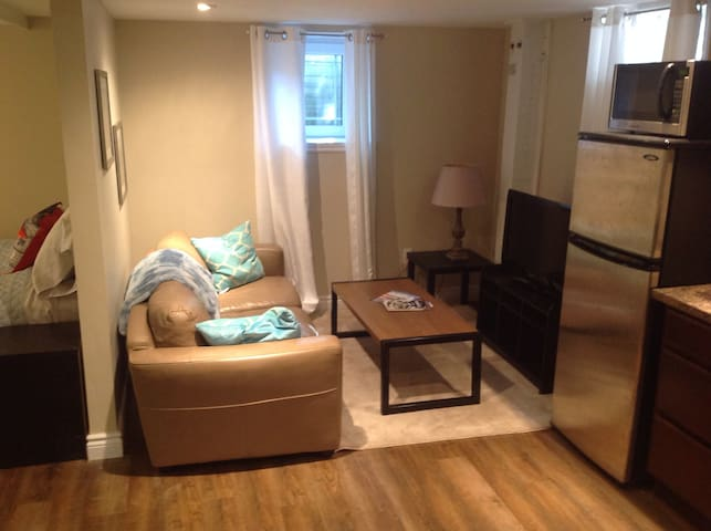 Bright Bachelor Basement Apt in Central Halifax