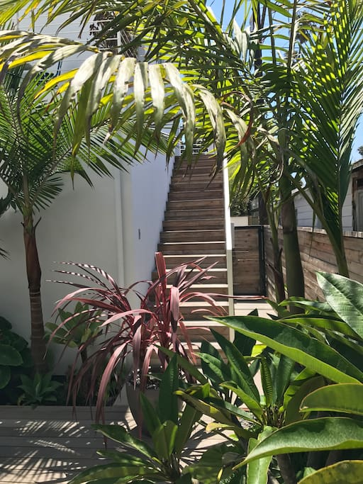 Steps up to the private entrance of the studio.