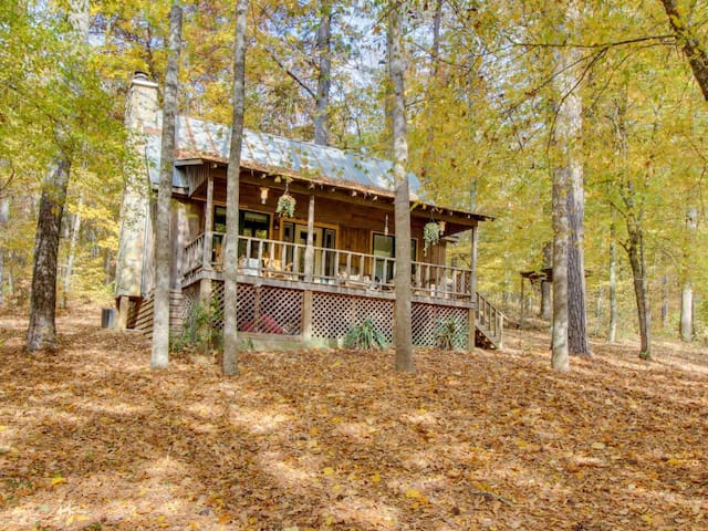 Driftwood Cabin - Pickens County - Annat