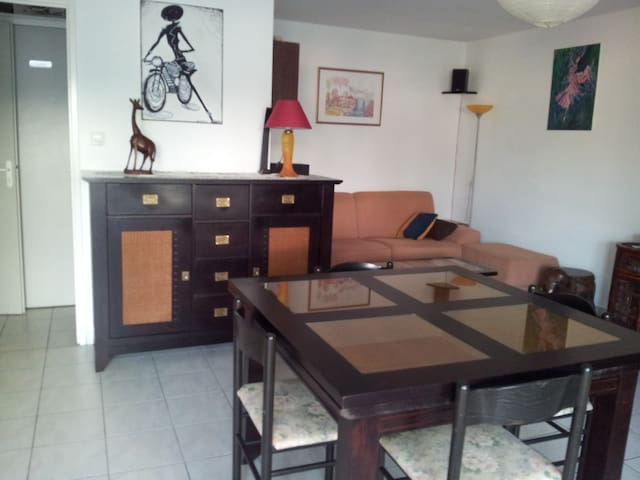 coquet studio de plein-pied avec terrasse