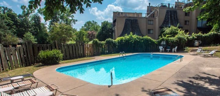 Private  2 StoryTownhome On the Mississippi-PETS!