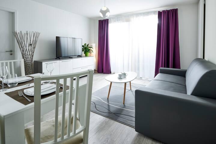 Appartement T3 proche aéroport de Bâle-Mulhouse