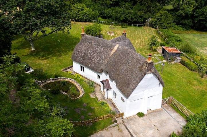 Isolated Old English Cottage In The Woods Cottages For Rent In