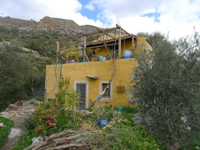 House in Riza(Root) - Lasithi