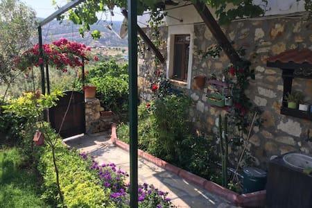Tarihi, bahçeli, köy manzaralı taş ev