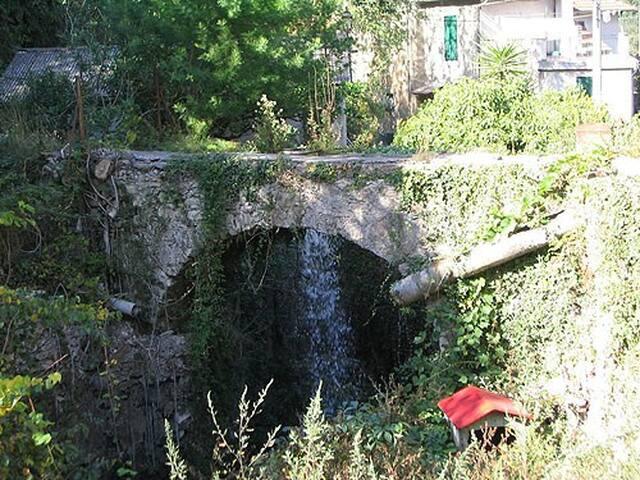 Relax tra gli ulivi in Villa Aurelio Moss - Cisano Sul Neva