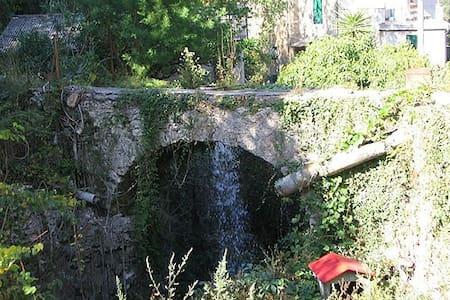 Relax tra gli ulivi in Villa Aurelio Moss - Cisano Sul Neva - Byt