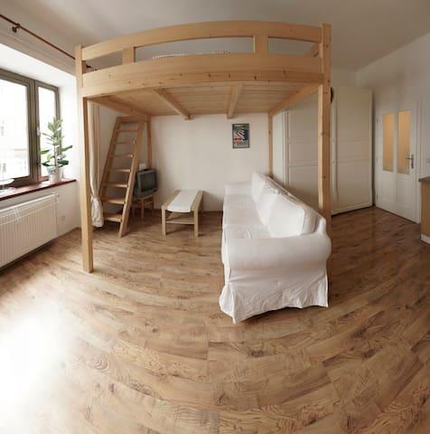 Cute studio so close to metro and center!! - Praga - Casa