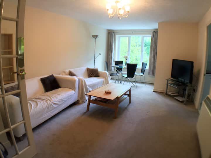 Clean quiet apartment for up to 4 guests