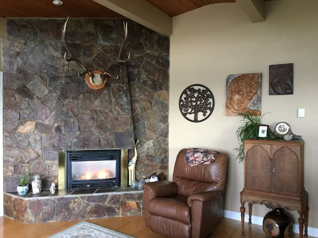 Gas fire place in the living room
