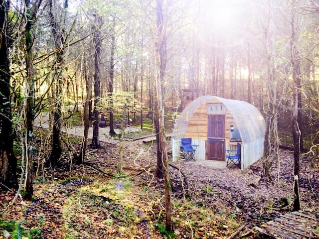 Stargazing Hut - Mossy Forest Glamping