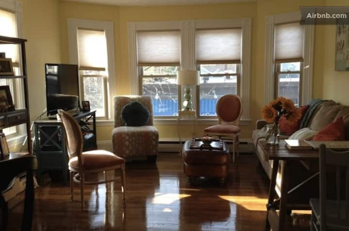 Sunny, spacious, super cute 1 bedroom Harvard Sq