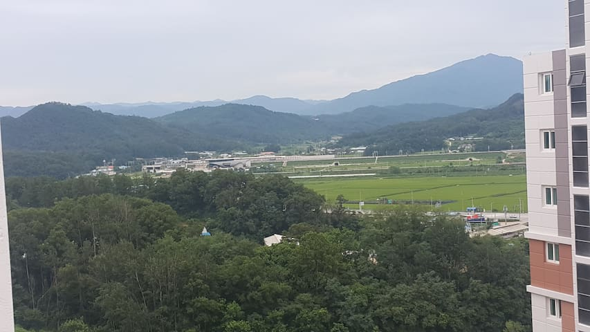 Nearby Pyeongchang(The winter olympic city)