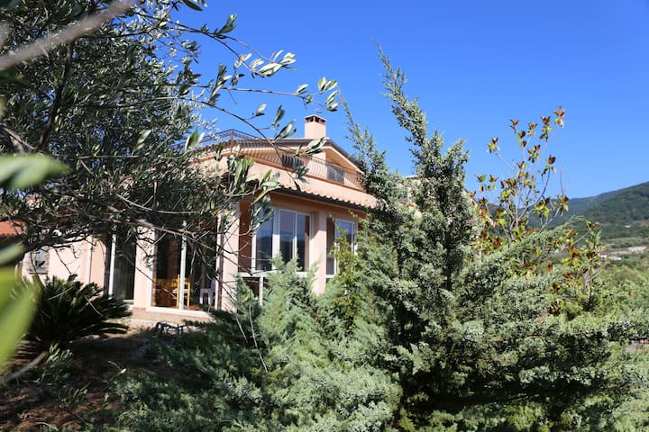 Villa con piscina nel Parco Nazionale del Cilento1 - Ceraso - Daire