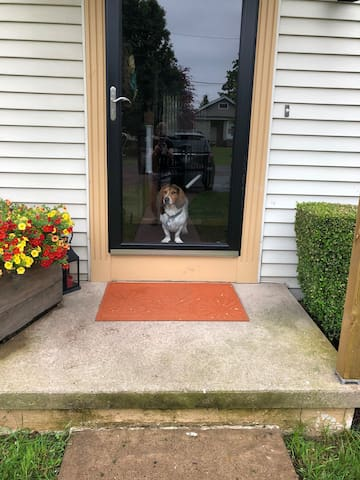Front entrance to the house. My best buddy, Whalen, had to take advantage of this photo op. Unfortunately...he won't be there to greet you.