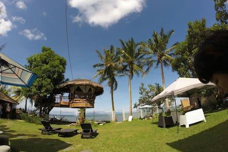 Lush green beach front villa - San Teodoro - Villa
