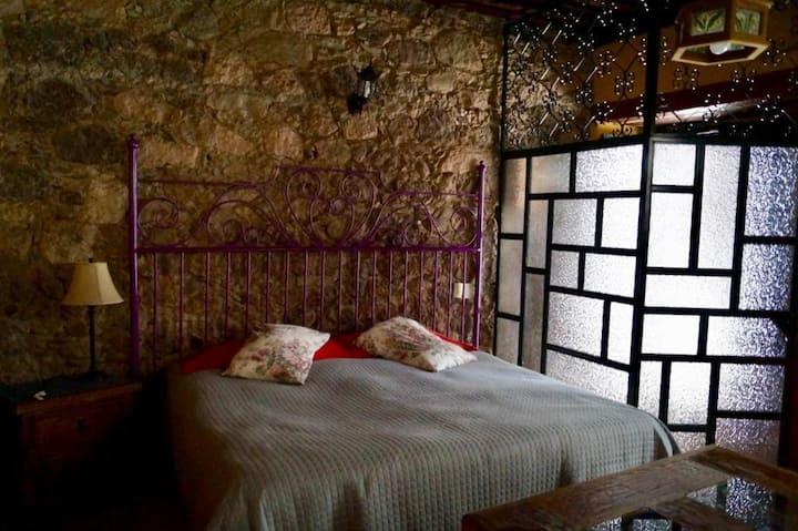 Habitación con cama extragrande y con gran vista