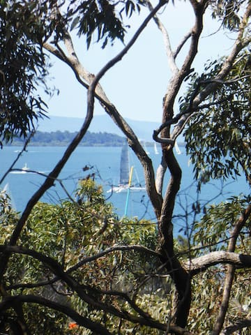 On the waterfront, walk to Manly Village - Lota - House