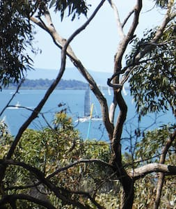 On the waterfront, walk to Manly Village - Lota - Talo