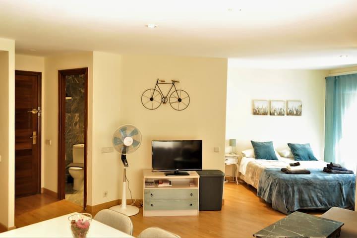 Full apartment Madrid Centre, Goya. Best location!