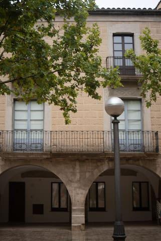 Magnífic apartament al centre de Banyoles PLM1721