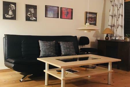 Hyggelig lejlighed