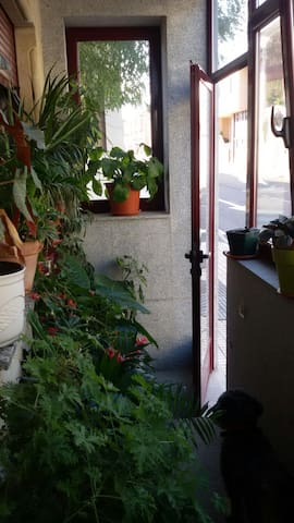 Habitación doble, precioso chalet zona residencial - Salamanca - Rumah Tamu