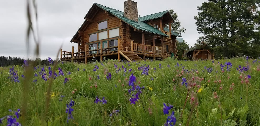 Spacious Log Cabin Hideaway With Stunning Views.