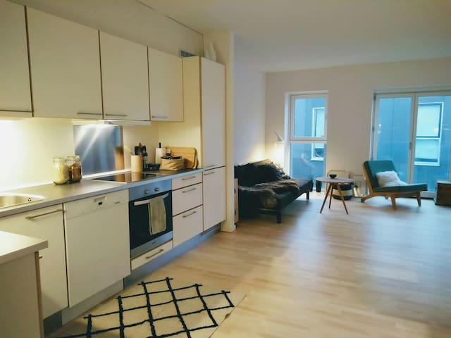 New and cozy apartment close to Copenhagen